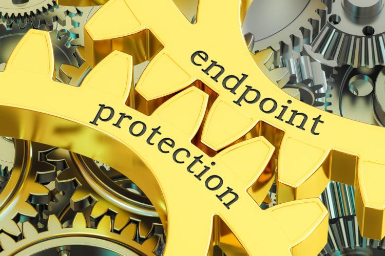 organizaciones endpoint